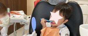 5歳息子に歯磨き指導してもらった